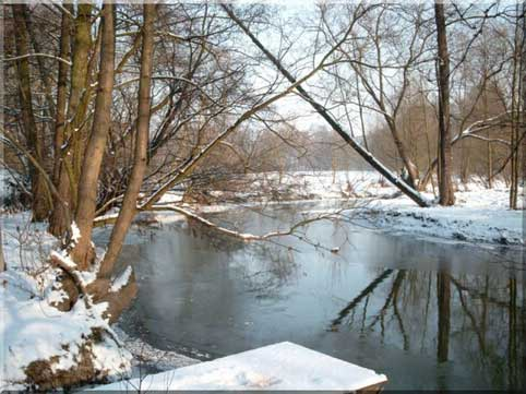 Wesenitz im Winter