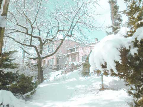 Wintergarten Haus Friedland
