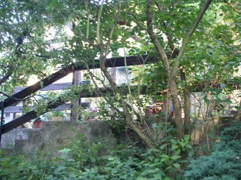 Gartengelände  Haus Friedland